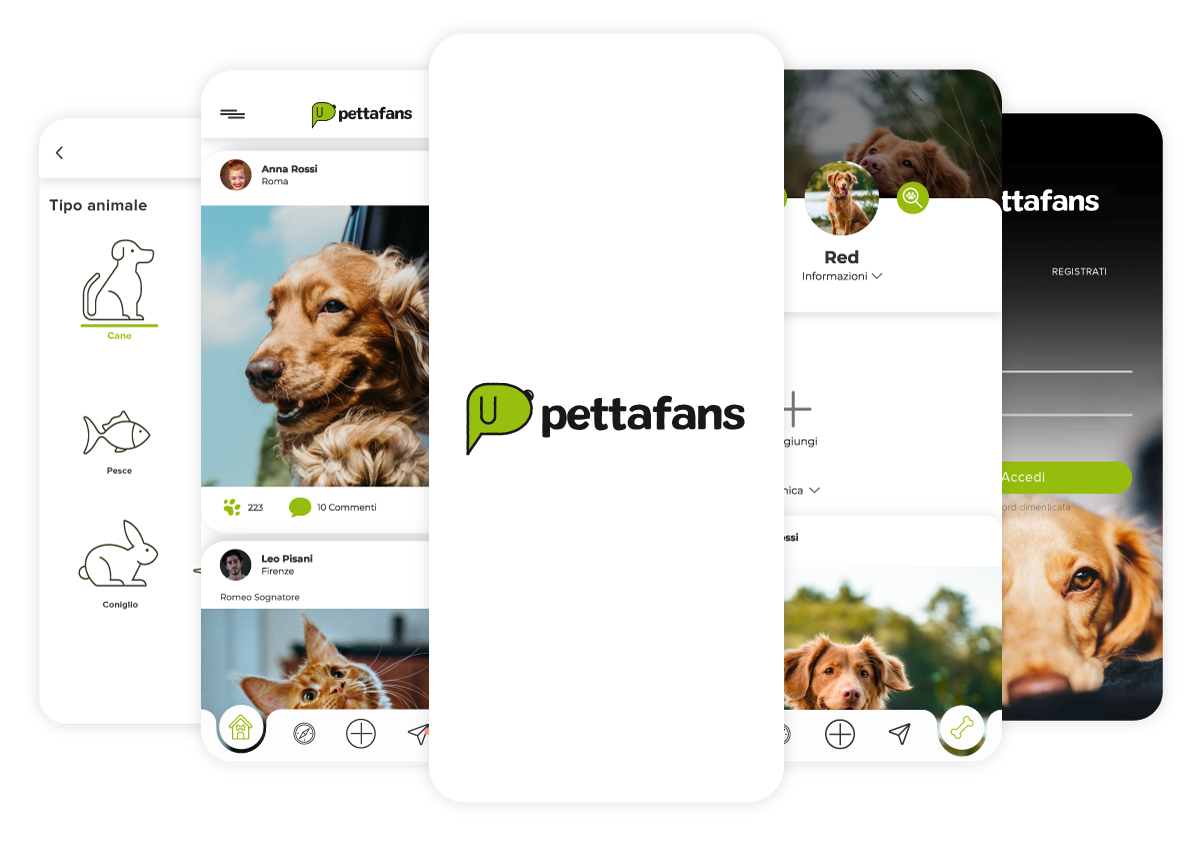esempi layout pettagram